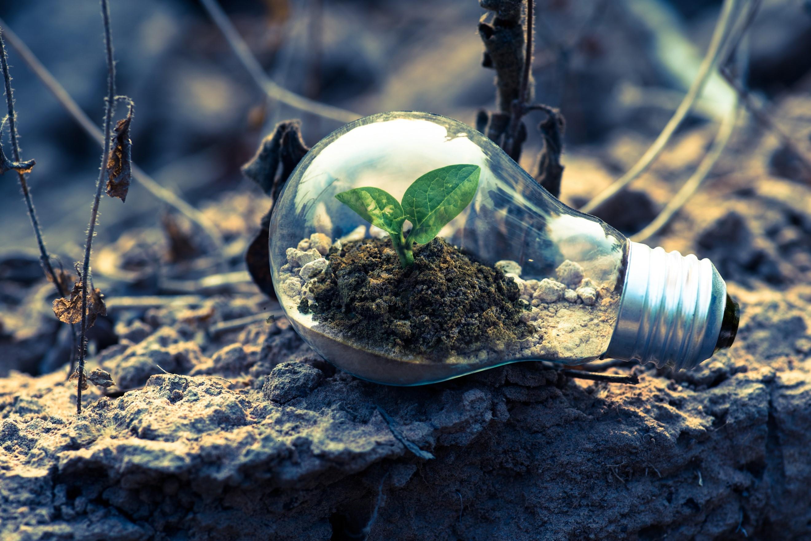 For Philanthropy or Profit?: ESG Investing - Bondora Blog