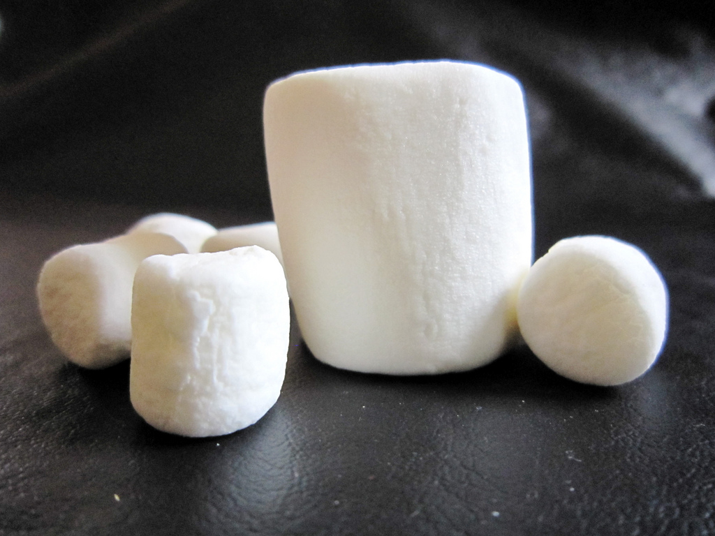 Marshmallow-Test