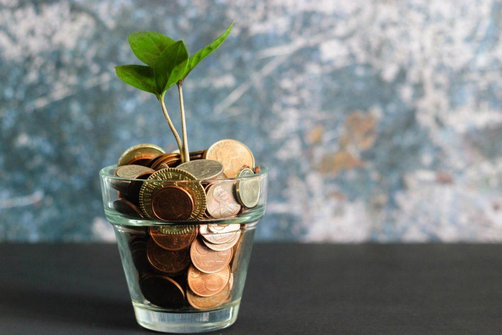 Raha paneb raha kasvama