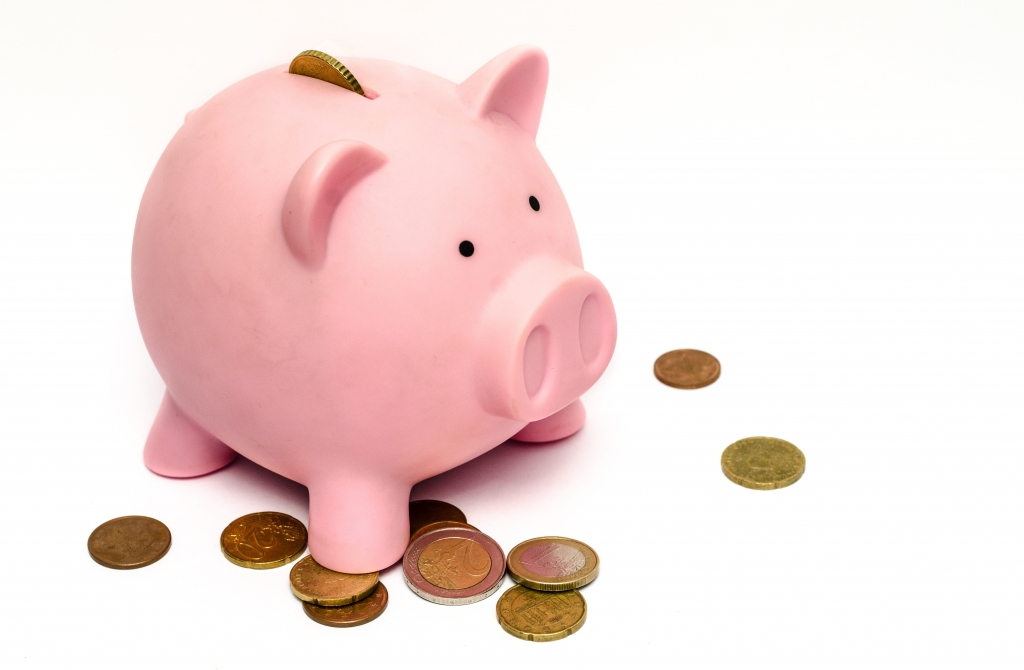 money-pig